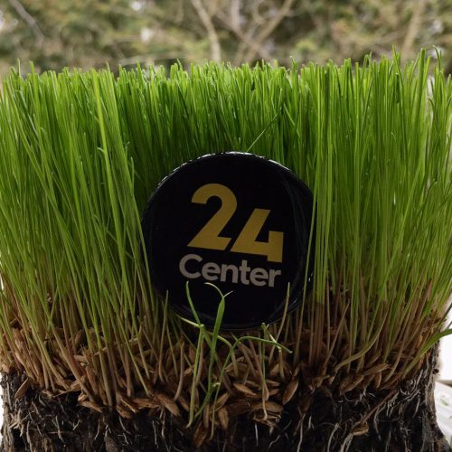 24 center pääsiäinen